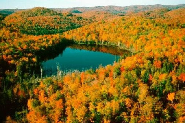 ケベック カナダ 紅葉