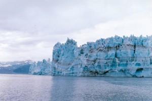 アラスカ グレーシャーベイ国立公園
