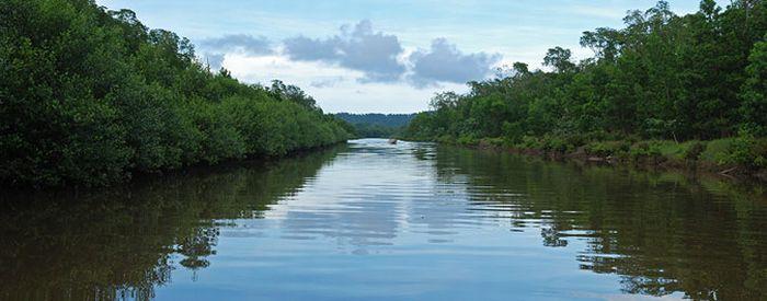 クリスタル パナマ運河クルーズ