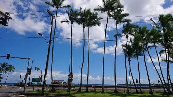ハワイ島・ヒロ